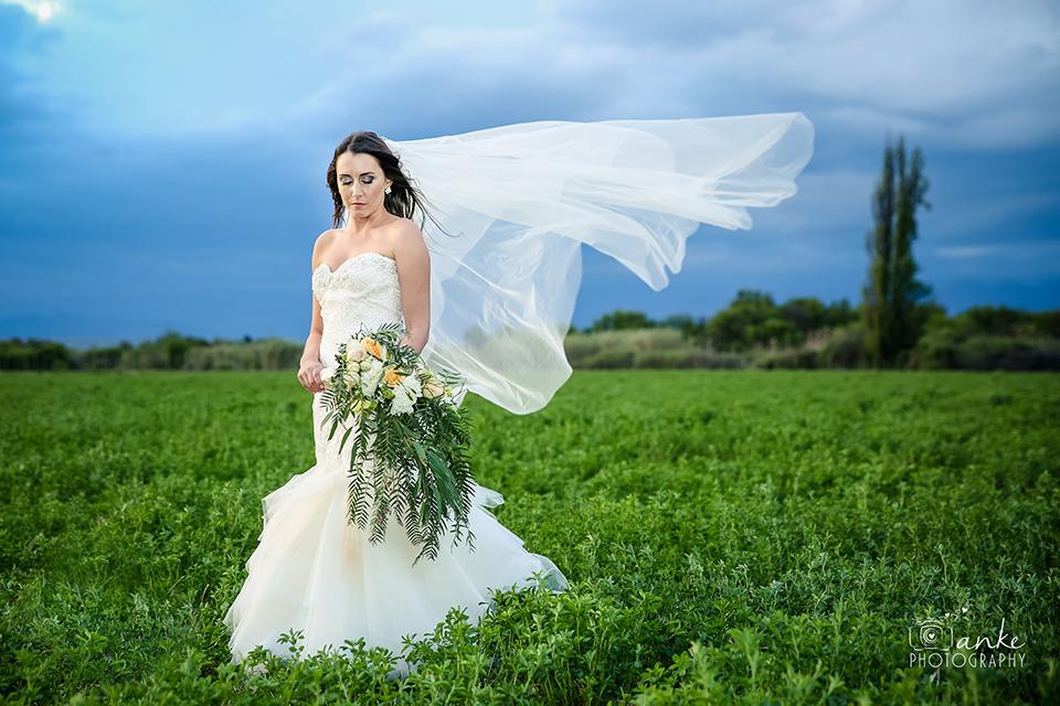 johan_heloise_wedding_la_plume_oudtshoorn-201